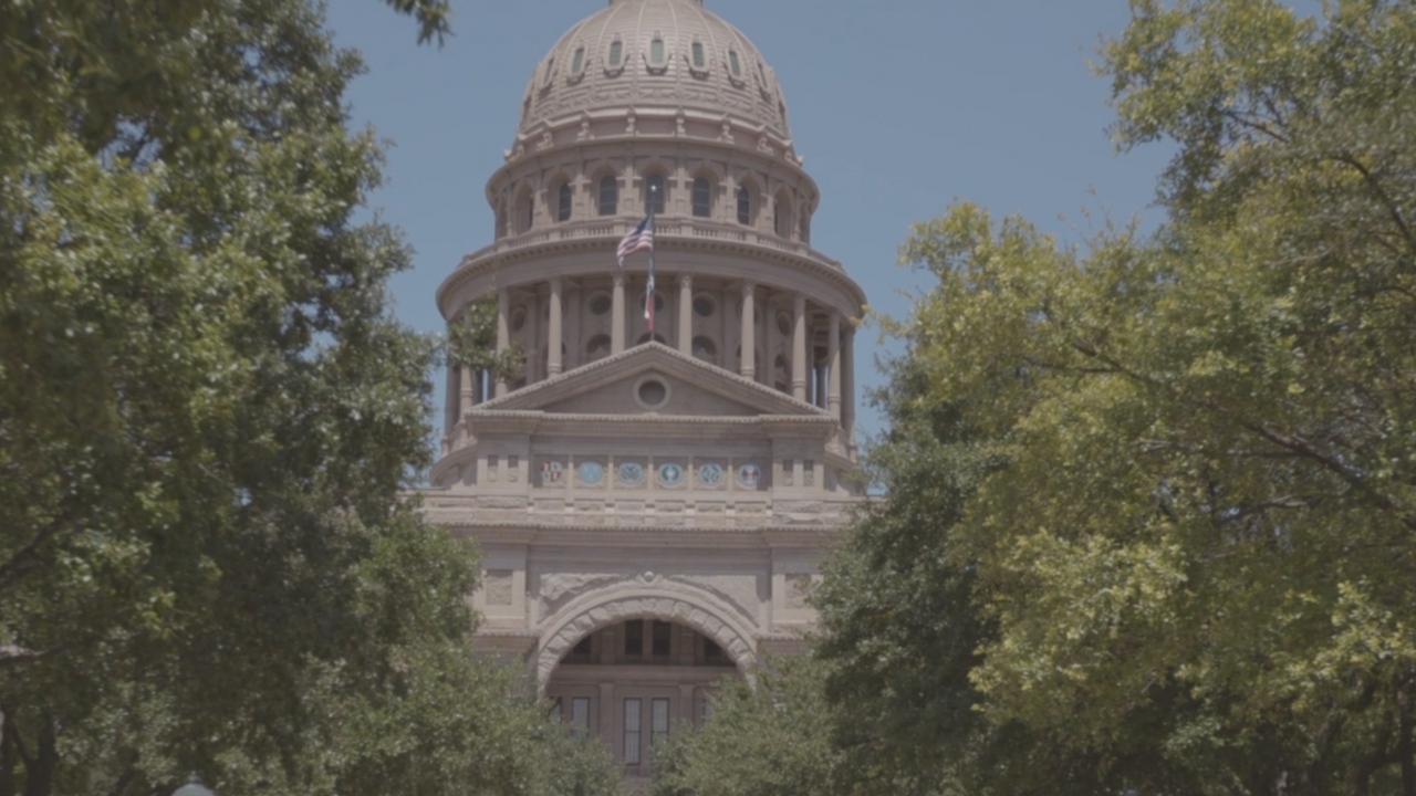 Texas House Votes to Create Governor's Task Force on Sexual Assault