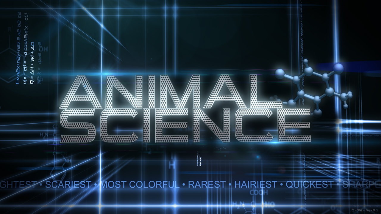 Xploration: Animal Science