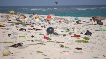 Our Oceans Are Littered With Trash — Here's How We Could Fix It