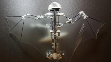 This Flying Robot Gets Its Agility From Bat Biology