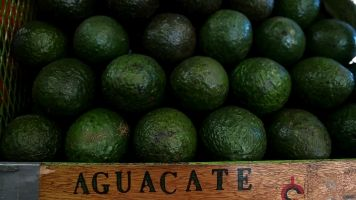 If The US Leaves NAFTA, That Could Cost Avocado-Lovers