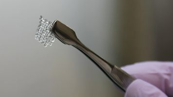 This 3-D Printed Ovary Might Help Restore Fertility