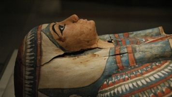 Mummy DNA Might Help End A Decades-Old Debate
