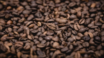 How Climate Change Could Be Very Bad For Your Caffeine Habit
