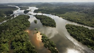Brazil Opens Part Of The Amazon Rainforest To Privatized Mining