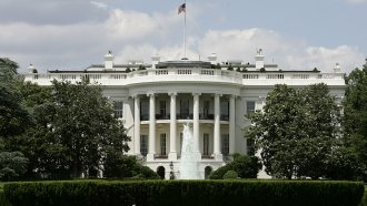 The Oldest Tree On The White House Grounds Is Being Removed