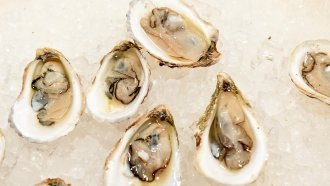 Health Officials Warn Of Norovirus Outbreak Linked To Canadian Oysters