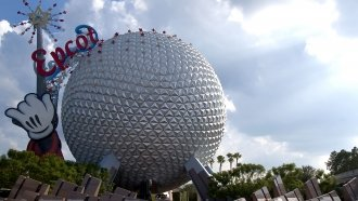 Disney Is Considering A Bump In Florida Workers' Minimum Wage