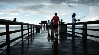 Popular Beaches Reopen As Florida Struggles To Deal With Red Tide