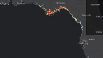 The Shape Of Florida's Gulf Coastline Can Make Storm Flooding Worse