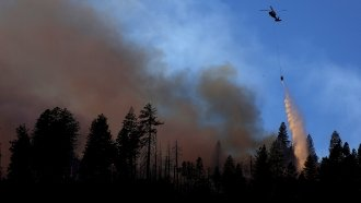 Finland Doesn't Have Many Forest Fires — But That's Due To Its Climate