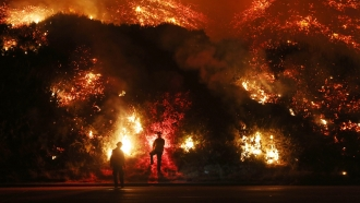 Firefighters monitor a fire along the 101 freeway north of Ventura, California