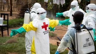 IFRC team members