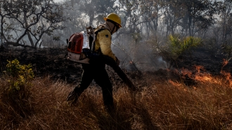 Firefighter battles fire in the Amazon.