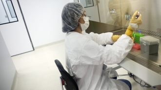 A lab worker demonstrates the harvesting of vaccine.