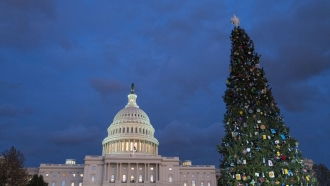 A Christmas tree stands outside the Capitol building.
