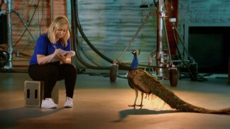Amy Poehler sits with peacock.