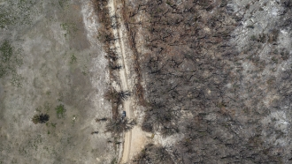 Australia's Tourism Industry Has Lost Around $700M Due To Bushfires