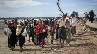 Rohingya are seen after arriving on a boat to Bangladesh.