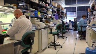 Possible Coronavirus Treatments Include Cloned Antibodies, Vaccines