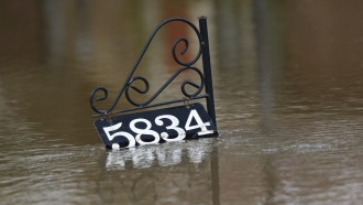 House number sign above floodwaters