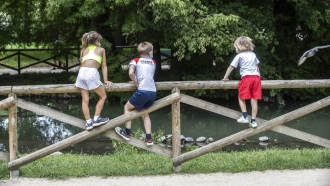 Kids looks at turtles at the Sempione Park.