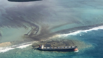 Oil spills from the MV Wakashio ship off of the coast of Mauritius