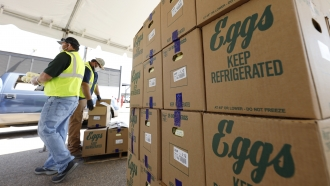 Cases of eggs from Cal-Maine Foods, Inc., await to be handed out by the Mississippi Department of Agriculture and Commerce