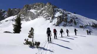 Skiers move around a mountain in Sequoia National Park, California.