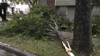 Part of a tree nearly hit a house in an Uptown neighborhood of New Orleans during Hurricane Zeta.
