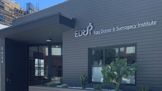 The Egg Donor & Surrogacy Institute in California.