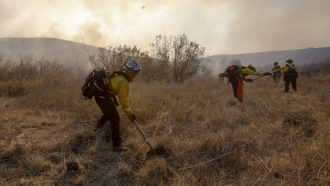 A hotshot hand crew works on a fireline while the Bond Fire burning in Silverado, California