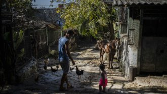 Man and his horse in Havana