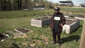 Man grows farm in Washington, D.C.