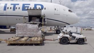 United Airlines 787 unloads cargo
