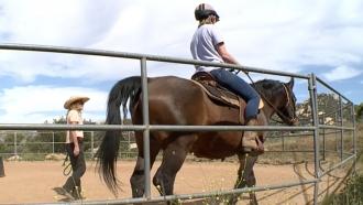 Woman rides a horse