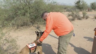 Handler talks to dog.