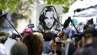 A portrait of Britney Spears looms over supporters and media members outside a court hearing concerning her conservatorship