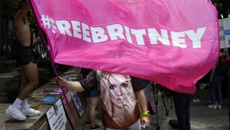 """A Britney Spears supporter waves a """"Free Britney"""" flag"""