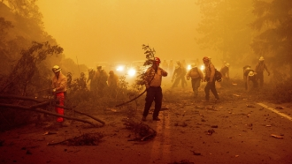 Dixie Wildfire Becomes The Largest Single Blaze In California History