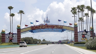 Cars drive under a sign greeting visitors near the entrance to Walt Disney World, in Lake Buena Vista, Florida.