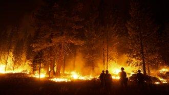 A firefighter lights a backfire to stop the Caldor Fire