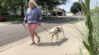 Woman walks a dog.