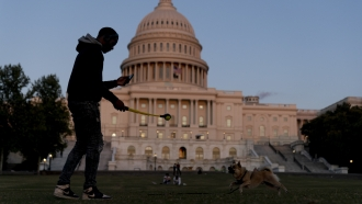 The U.S Capitol is visible at sunset as a man plays fetch with a dog in Washington, D.C.