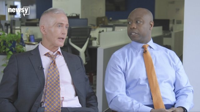 Unified': Rep. Gowdy And Sen. Scott Talk Unity, Race And Their Party