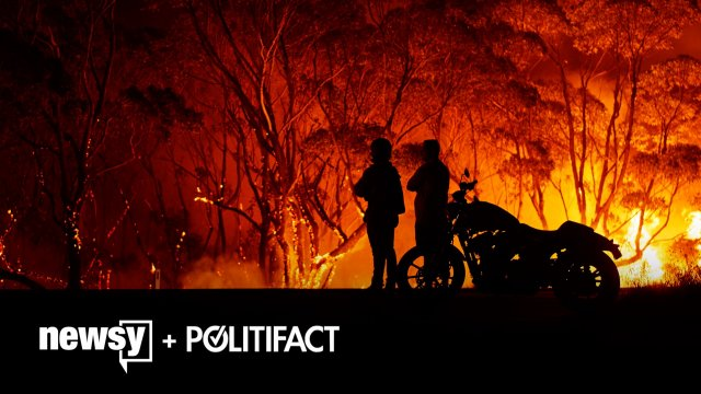 What The Fact: Australia Bushfires