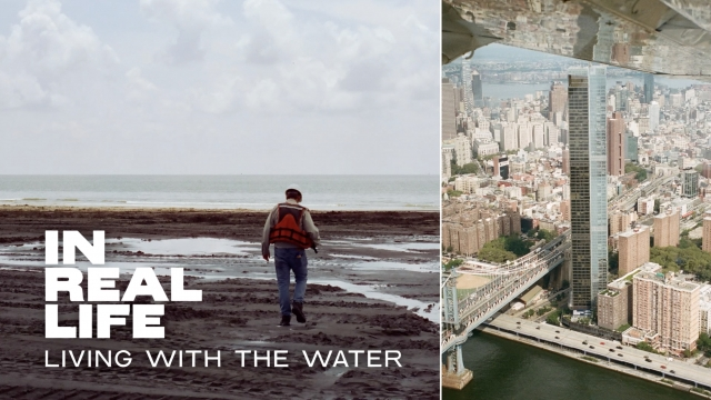 In Real Life: Living With The Water