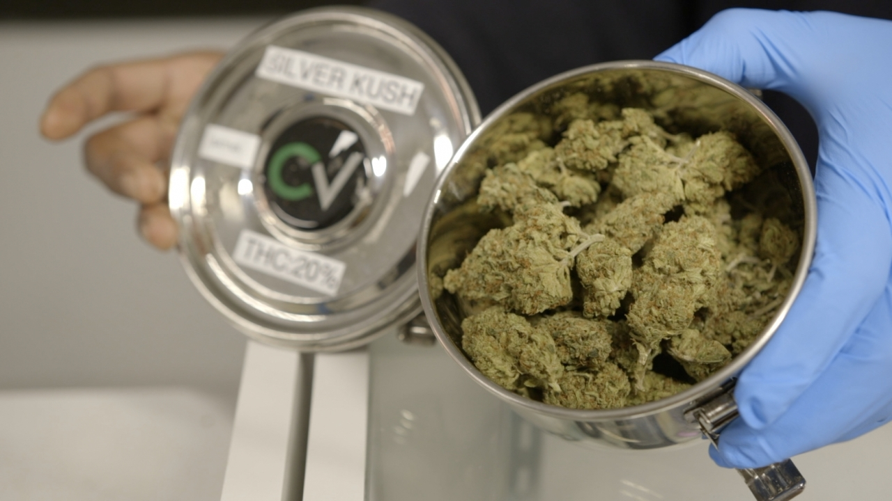 Marijuana at Herbal Alternatives medical marijuana dispensary in Washington, D.C.