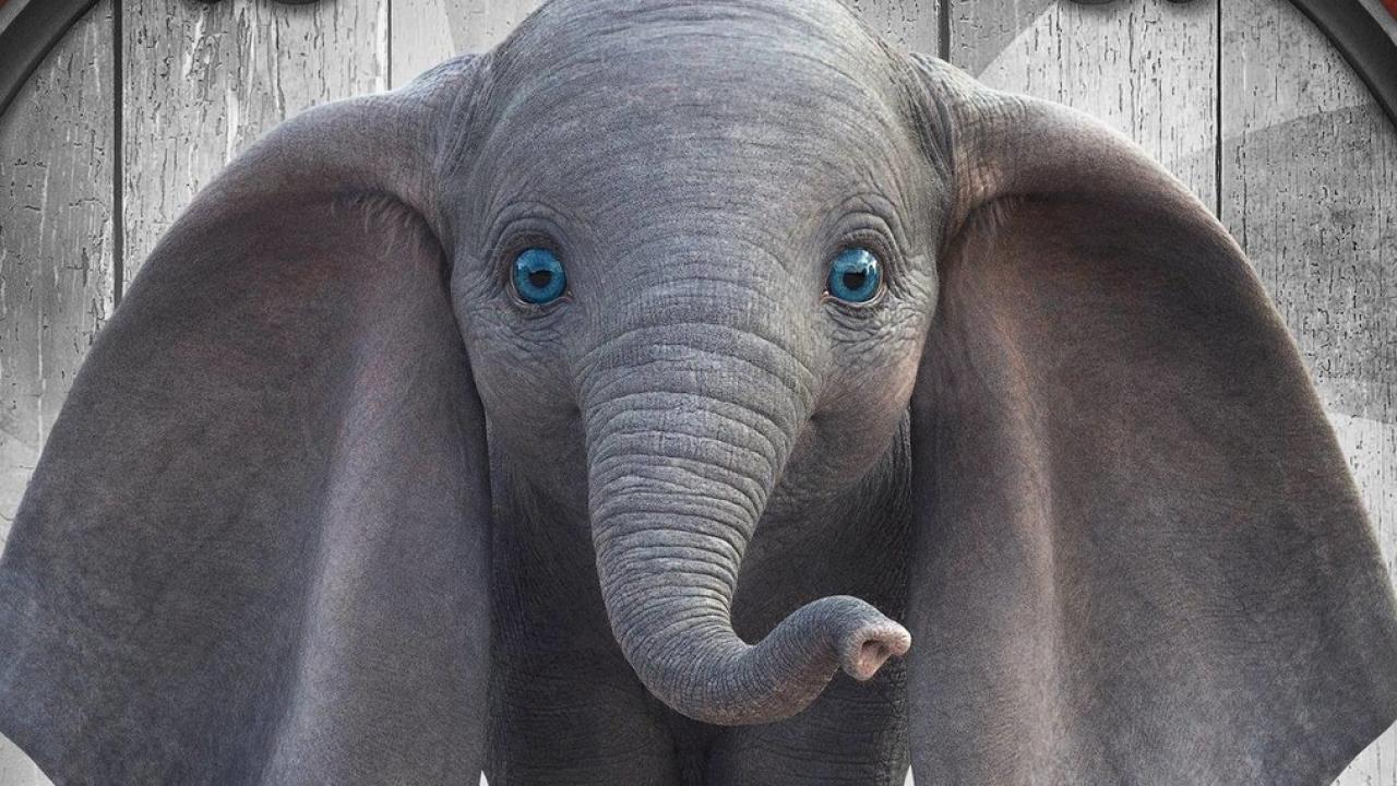 """""""Dumbo"""" remake film poster."""