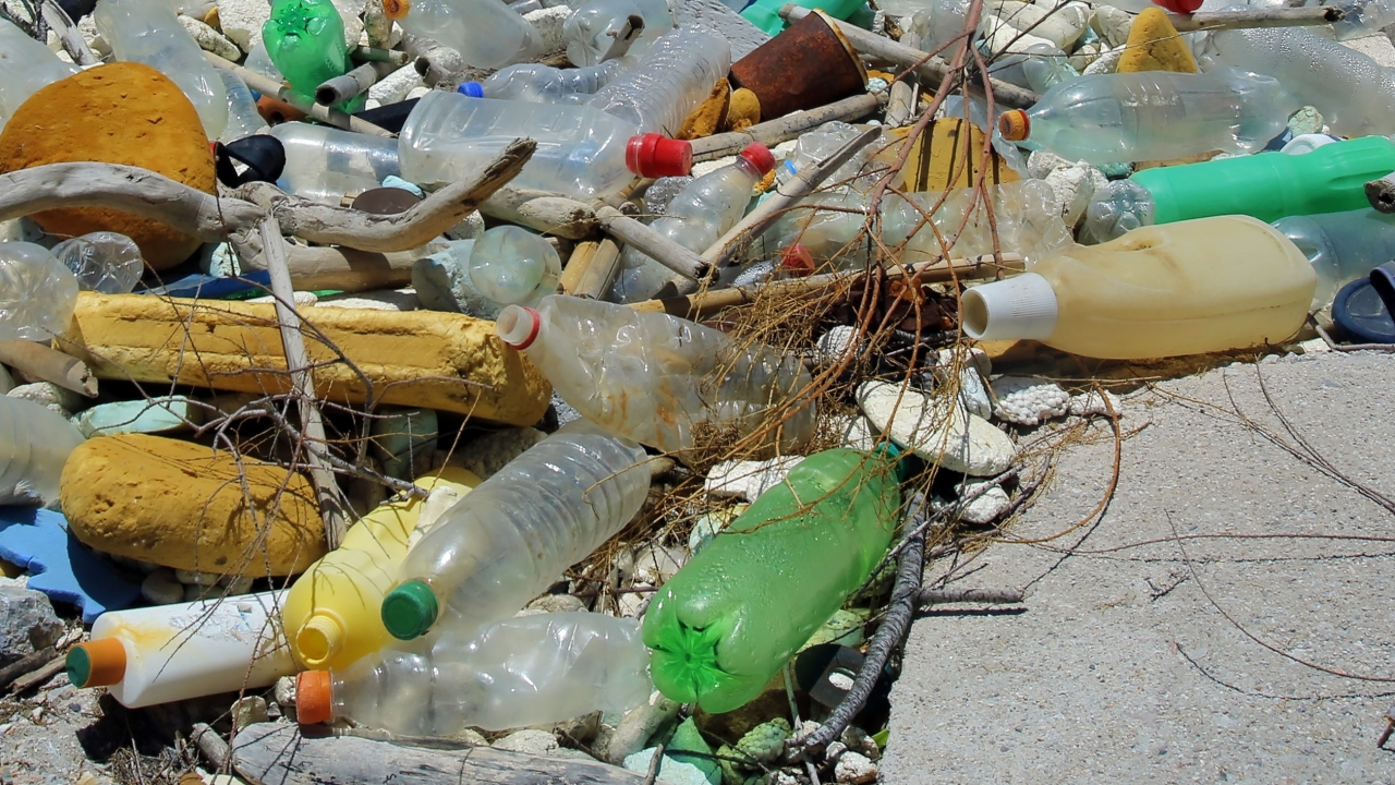 Plastic garbage on a beach